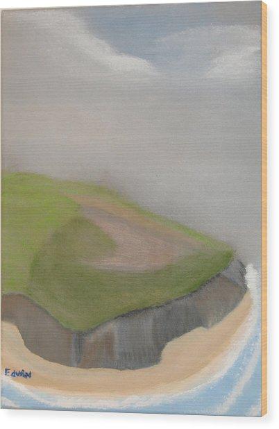 Ireland Cliffs Wood Print by Edwin Long