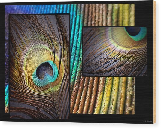 Iridescent Beauty Wood Print