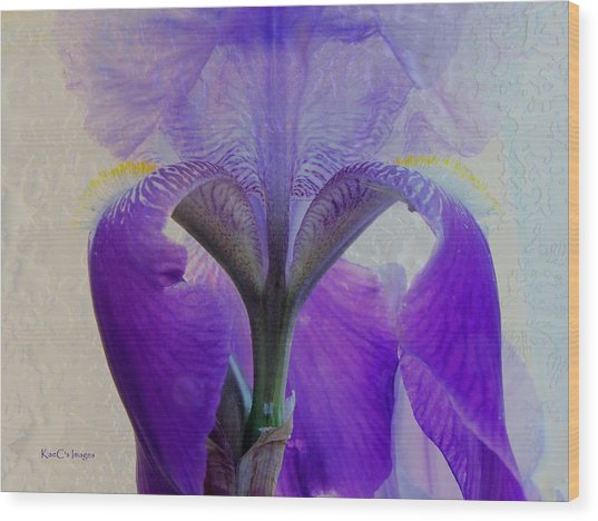 Iris And Ice Wood Print