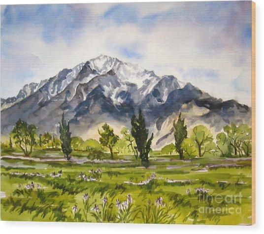 Iris And Mt Tom Wood Print