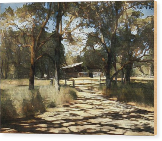 Iris Barn Wood Print