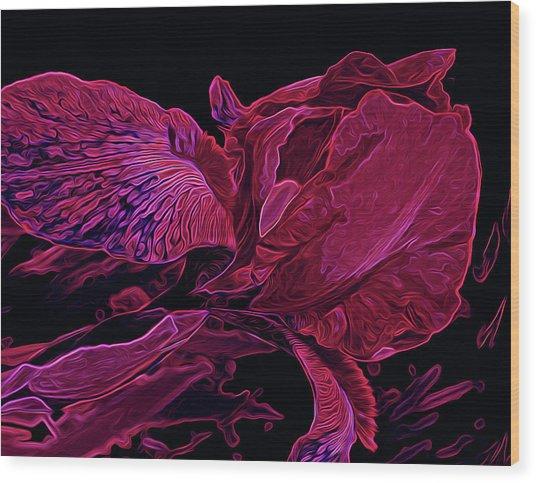 Iris Deep Red Glow Wood Print