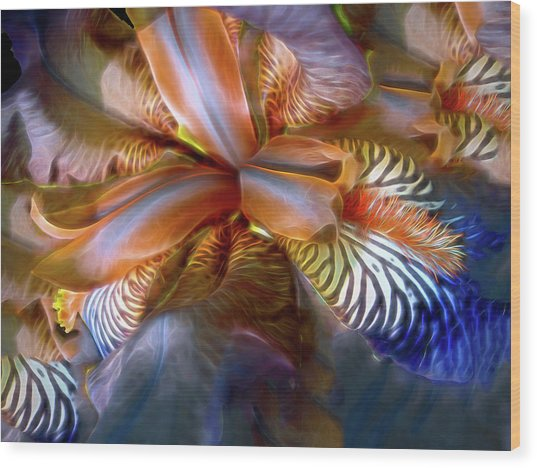 Iris Dream Wood Print