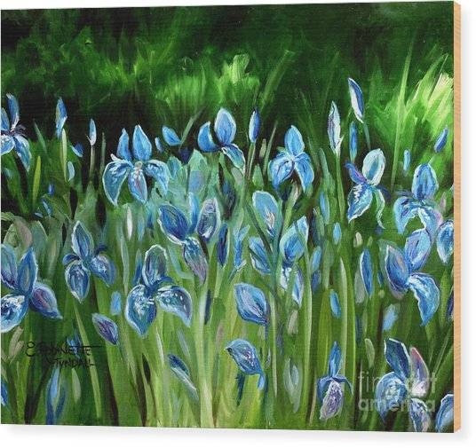 Iris Galore Wood Print