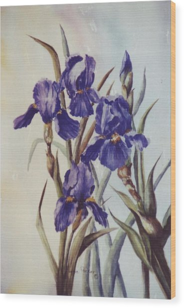 Iris Wood Print by Lynne Parker