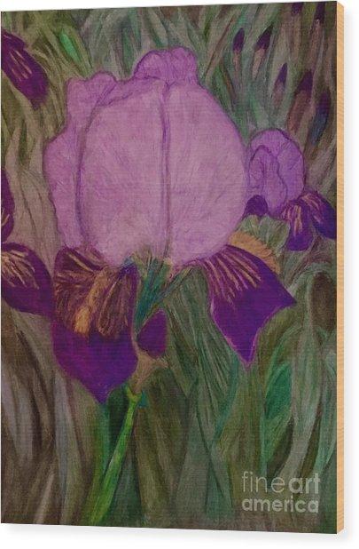 Iris - Magic Man. Wood Print