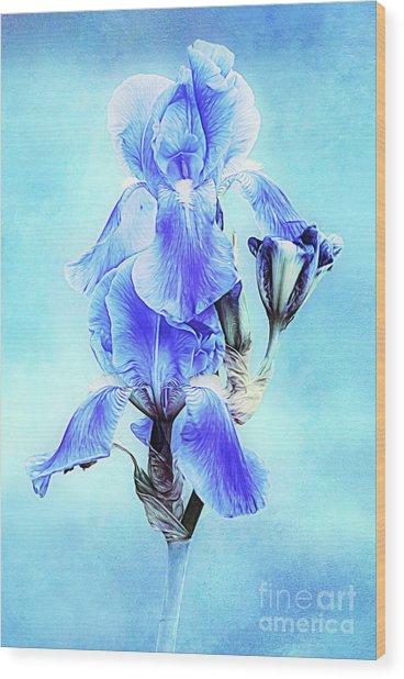 Iris Pair In Blue Wood Print