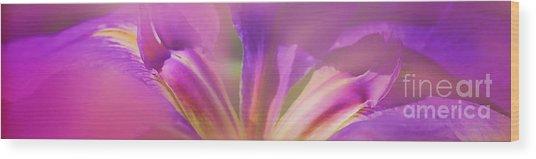Iris Panorama Wood Print