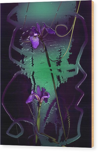 Iris Reflections Wood Print by Algis Kemezys
