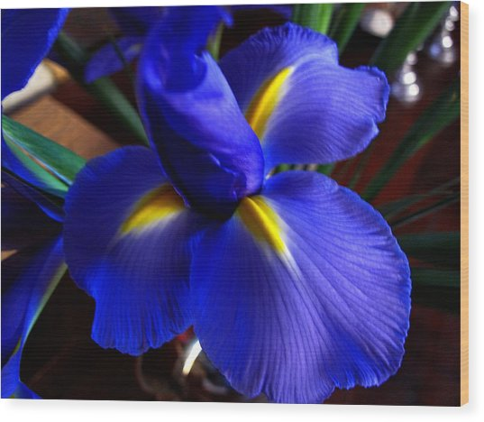 Iris Unfolding Wood Print
