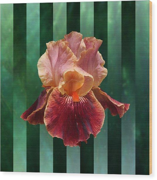Iris Unleashed Wood Print