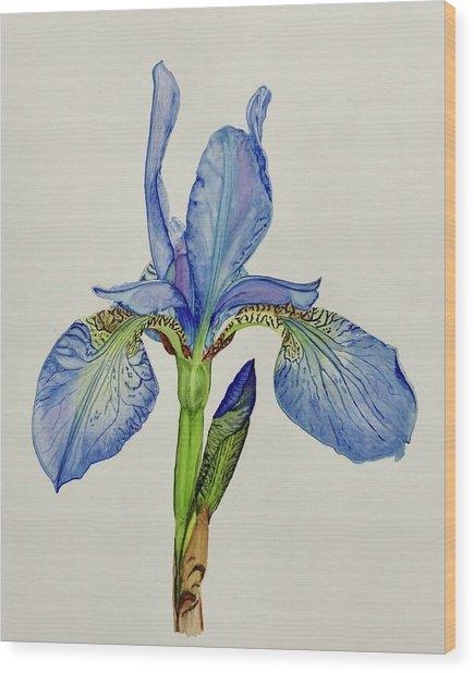 Iris You Were Here Wood Print
