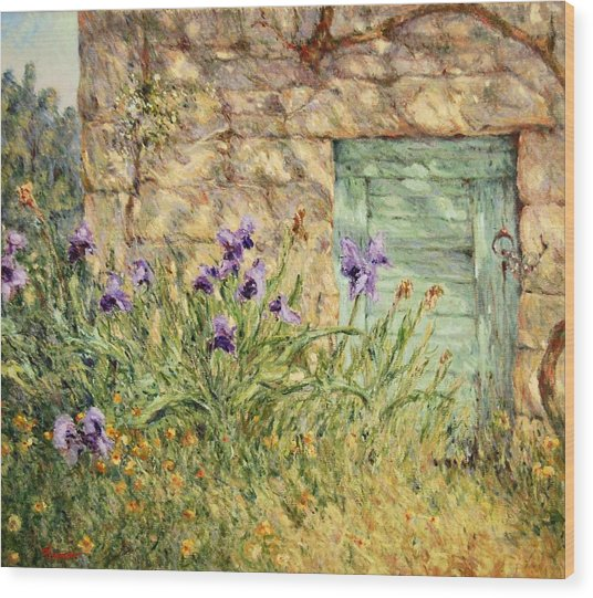 Irises At The Old Barn Wood Print