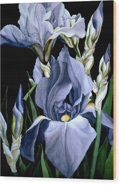 Irises In Blue Wood Print