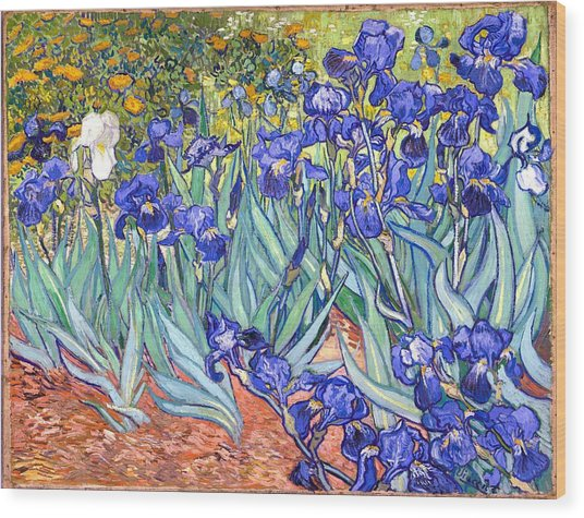 Wood Print featuring the painting Irises by Van Gogh