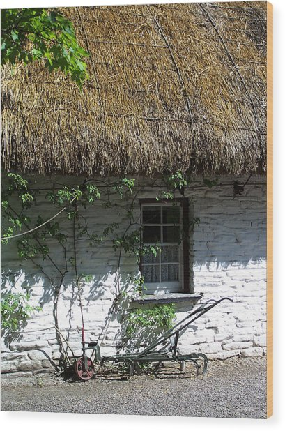 Irish Farm Cottage Window County Cork Ireland Wood Print