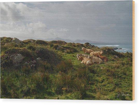 Irish Rustic Wood Print by Joe Bonita