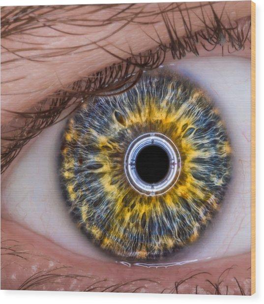 iRobot Eye v2.o Wood Print