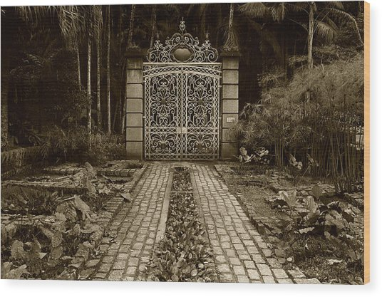 Iron Gate Wood Print by Amarildo Correa