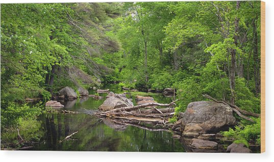 Isinglass River, Barrington, Nh Wood Print