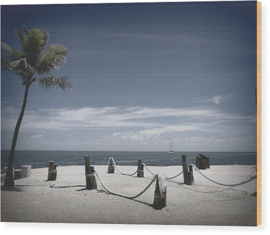 Islamorada Scenery Wood Print by Tammy Chesney