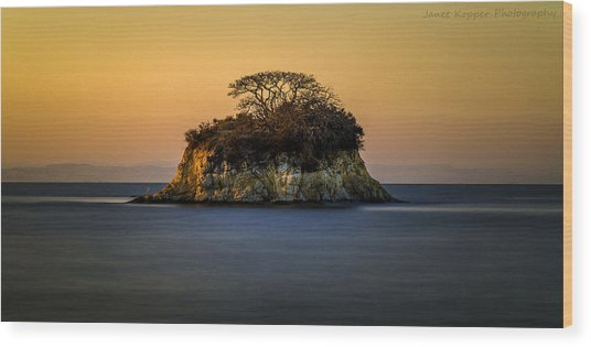Island At Sunset Wood Print