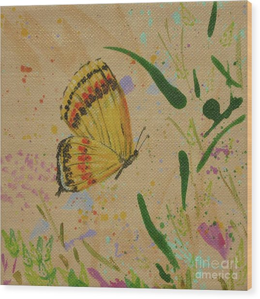 Island Butterfly Series 1 Of 6 Wood Print