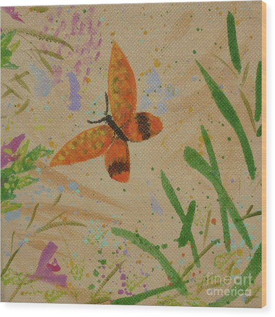 Island Butterfly Series 3 Of 6 Wood Print