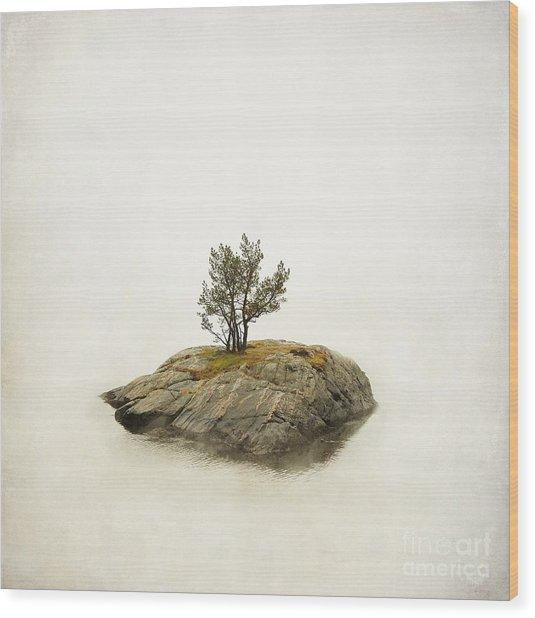 Island In The Stream Wood Print