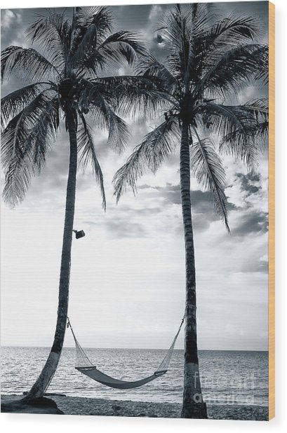 Island Nap Time At San Andres Island Wood Print by John Rizzuto