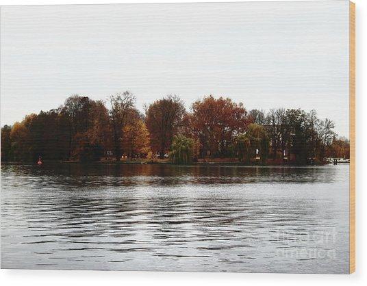Island Of Trees Wood Print