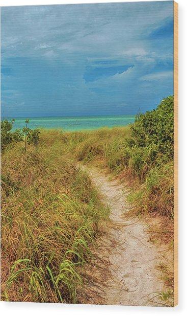 Island Path Wood Print