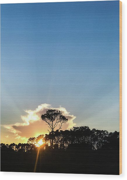 Wood Print featuring the photograph Island Sunset by Whitney Leigh Carlson