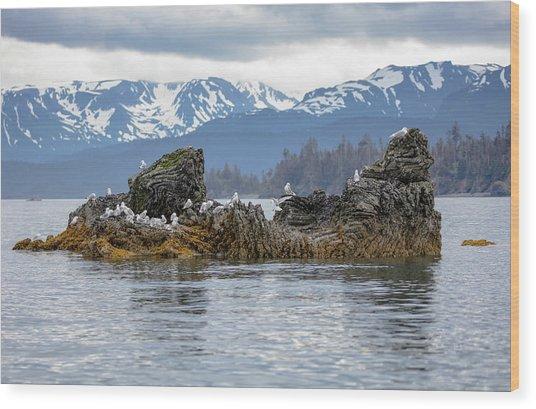 Island With Gulls Wood Print