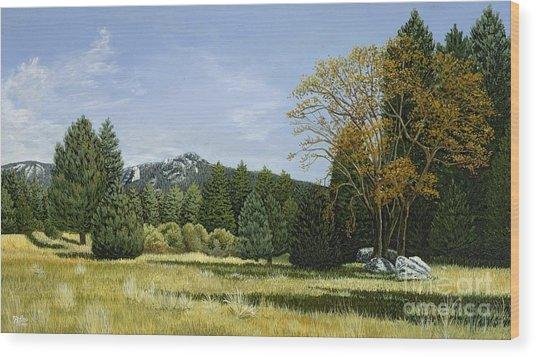 Isomata Meadow Wood Print
