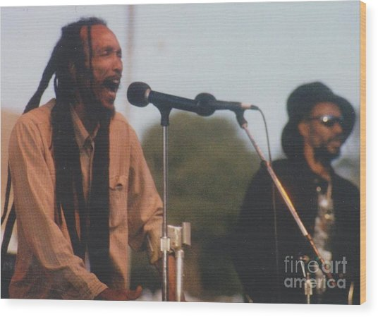 Israel Vibration Wood Print by Mia Alexander