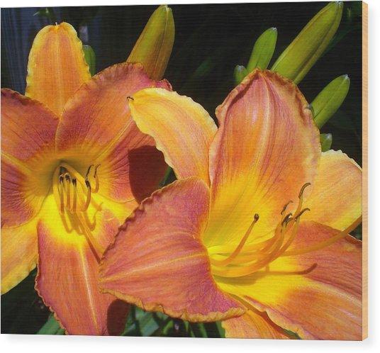 It Is So True Lily Wood Print by Cynthia Daniel