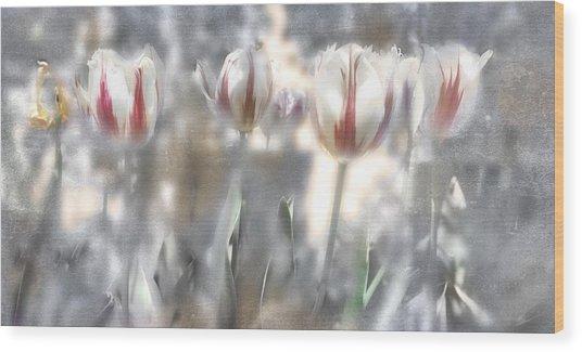 It Was A Beautiful Day Wood Print by Inesa Kayuta