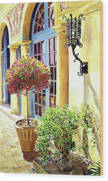 Italian Elegance Wood Print by David Lloyd Glover
