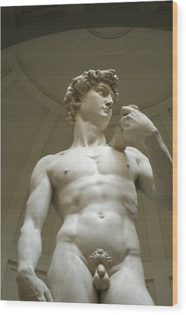 Italy, Florence, Statue Of David Wood Print