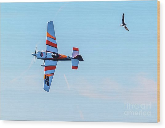 It's A Bird And A Plane, Red Bull Air Show, Rovinj, Croatia Wood Print
