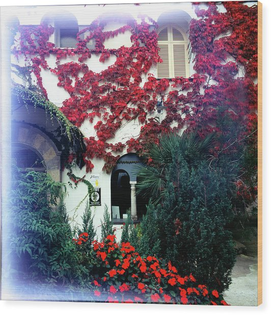 Ivy Flames Ravello Italy Wood Print by Martin Sugg