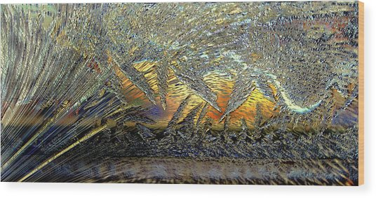 Jack Frost Painting Wood Print