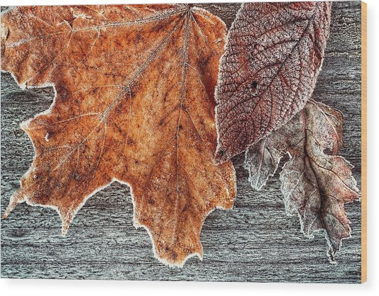 Jack Frost's Touch Wood Print