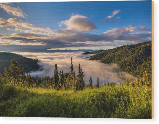 Jackson Hole From Above Wood Print