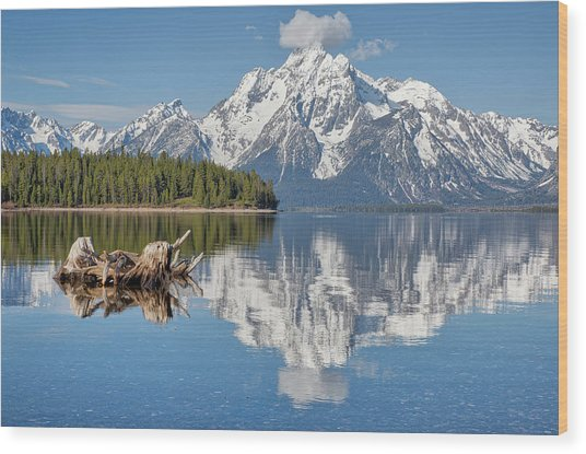 Jackson Lake, Gtnp Wood Print
