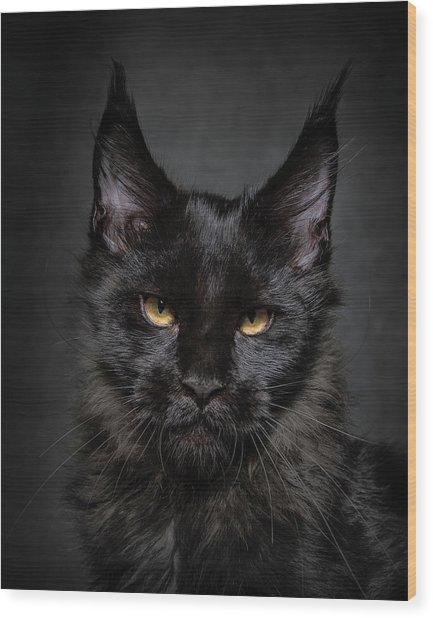 Wood Print featuring the photograph Jaguar by Robert Sijka