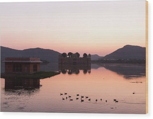 Jal Mahal, Jaipur, India Wood Print