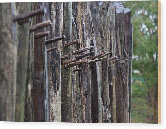 Jamestown Fort Wall Wood Print