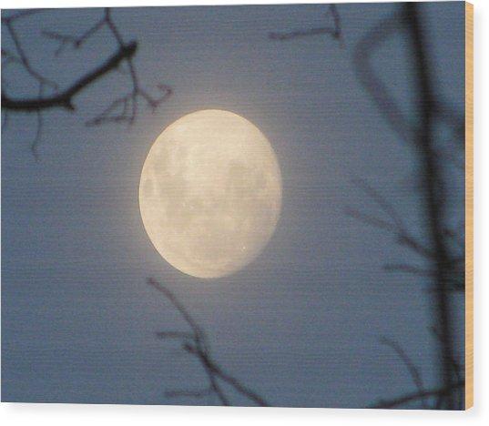 January Blue Moon Wood Print